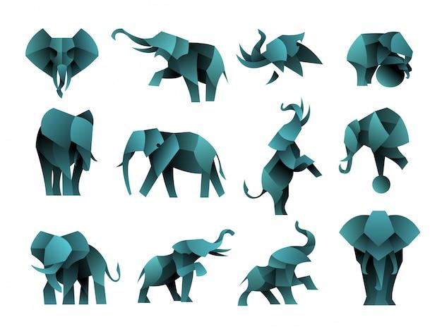 Packung mit farbverlauf elefanten logo