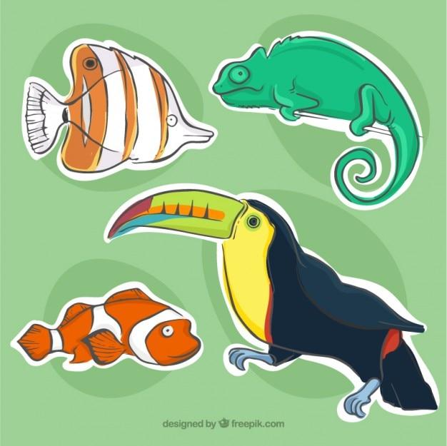 Packung mit fische und tiere etiketten