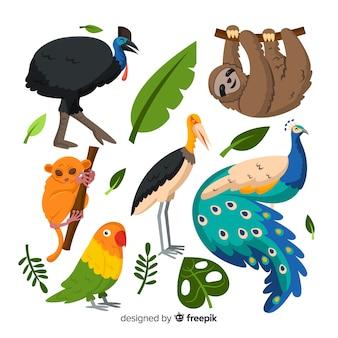 Packung mit flachen tropischen tieren