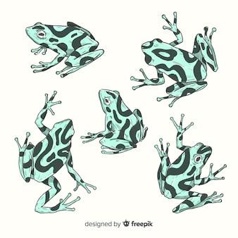 Packung mit handgezeichneten frosch