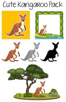 Packung mit niedlichem känguru