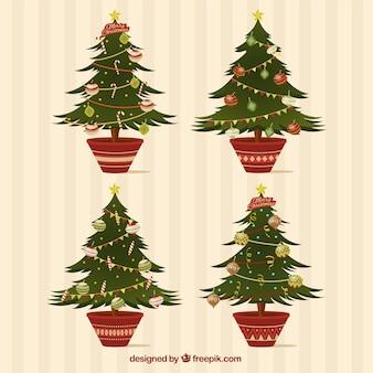 Packung mit vier tannen für weihnachten