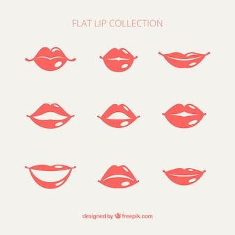 Packung mit weiblichen lippen