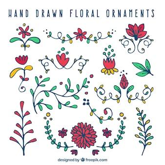 Packung von hand gezeichneten dekorativen blumen von farben