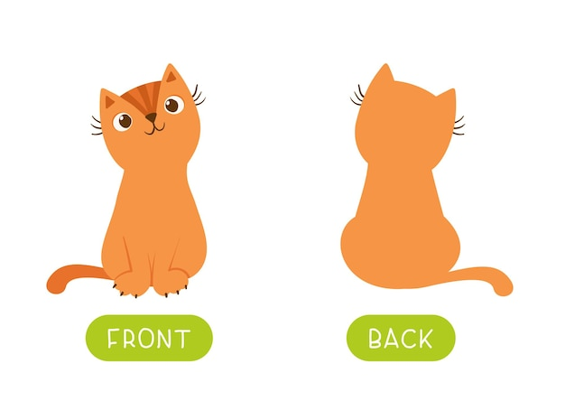 Pädagogische antonyme wortkarte mit katzen
