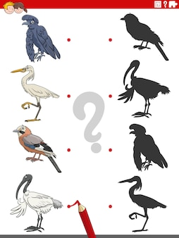Pädagogisches schattenspiel mit zeichentrickvogelfiguren