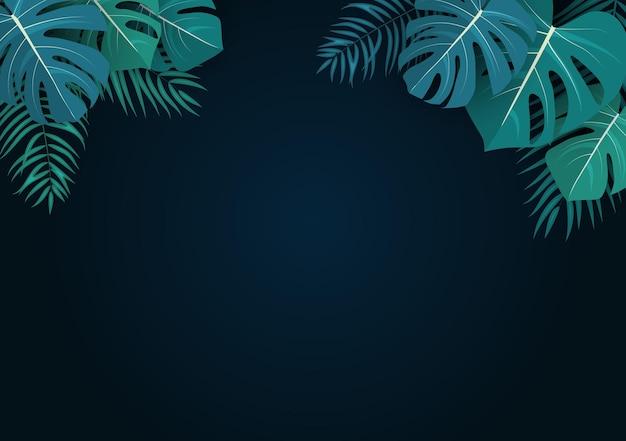 Palm und monstera verlässt natürlichen sommerhintergrund