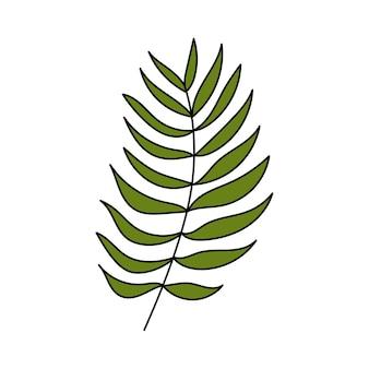 Palmblatt. tropische pflanze. einfache abbildung. sommersymbol