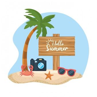 Palme mit kamera und sonnenbrille mit krabben am strand