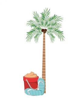 Palme mit kokosnuss im weiß