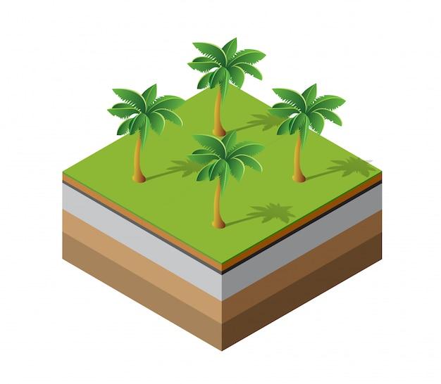 Palmen natürlich