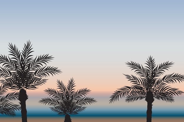 Palmen vor dem hintergrund des meeres und des sonnenuntergangs.