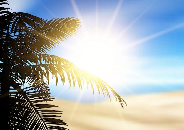 Palmenschattenbild auf einer defokussierten strandlandschaft