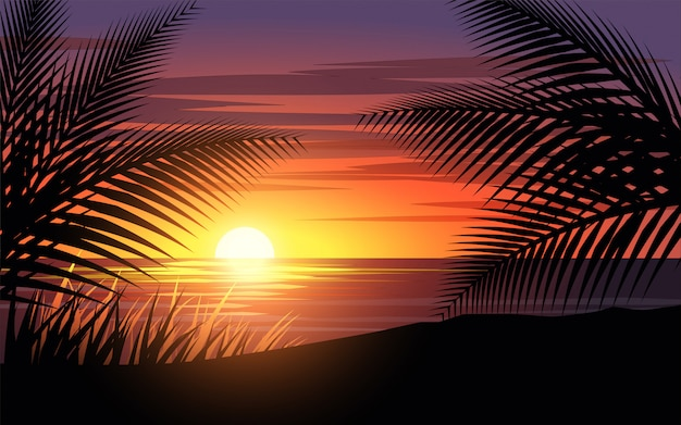 Palmenschattenbild bei sonnenuntergang