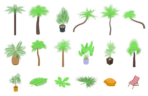 Palmensymbole eingestellt. isometrischer satz von palmenikonen für web lokalisiert auf weißem hintergrund