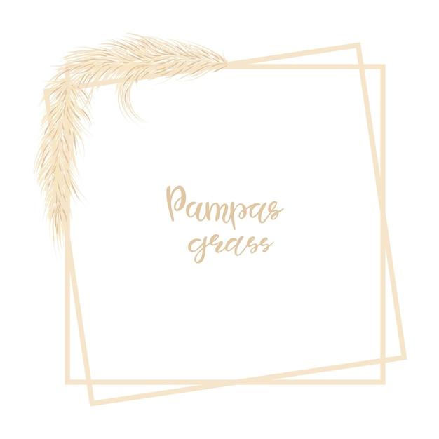 Pampasgras. dekorativer hintergrund mit trockenem gras im boho-stil. vektor-illustration.