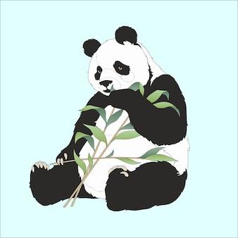 Panda, der bambus isst