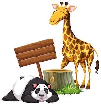 Panda und giraffe am schild