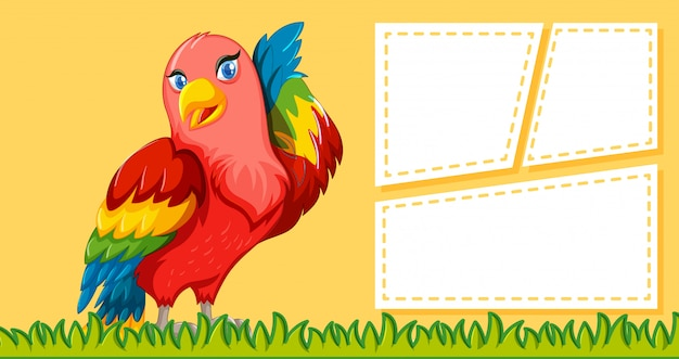 Papagei auf hinweis hintergrund