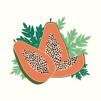 Papaya-fruchtvektorillustration
