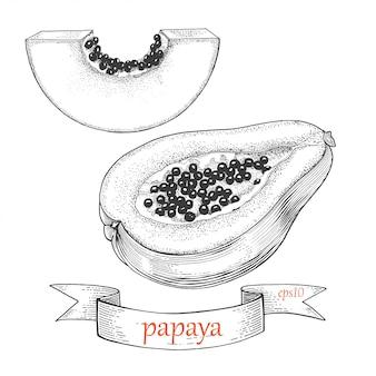 Papaya gesetzt. in scheiben schneiden und halbieren. tropische frucht lokalisiert auf einem weißen hintergrund.