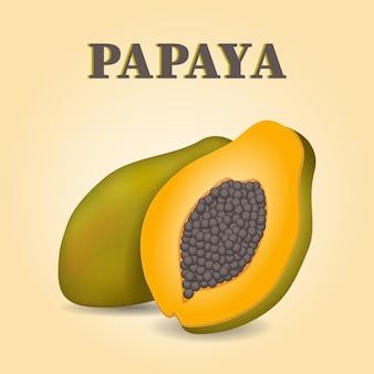Papaya scheibe und ganze frucht realistische illustration.