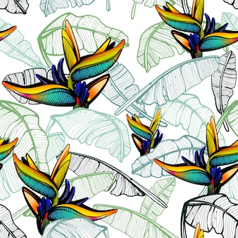 Paradiesvogel muster