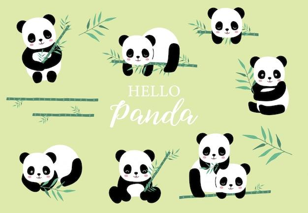 Pastelltier eingestellt mit panda, bambusillustration für aufkleber, postkarte, geburtstagseinladung. editables element