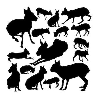 Patagonische mara tier silhouetten