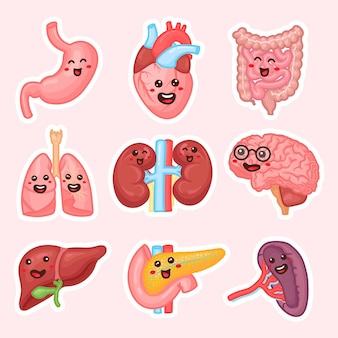 Patches für die inneren organe des menschen. lustige aufkleber für die organe des menschlichen körpers. nieren, leber, bauchspeicheldrüse, darm, milz, herz, gehirn und lunge. anatomie lustiger druck. kindererziehungs-patch-set.