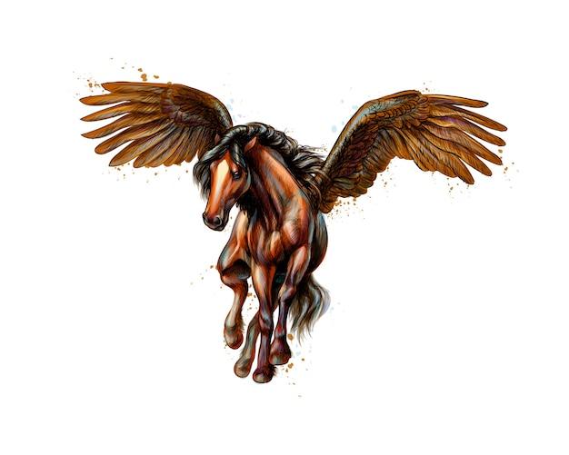Pegasus mythisches geflügeltes pferd vom spritzen der aquarelle. hand gezeichnete skizze. illustration von farben