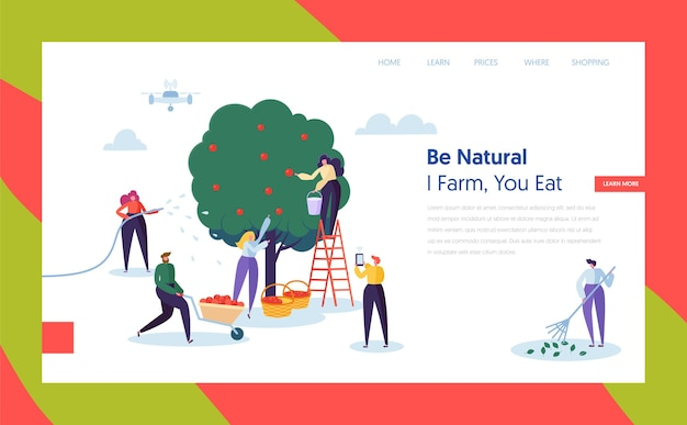 People farmer harvest apple konzept landing page. frauencharakter, der reife frucht zum korb erntet. man control farm mit drohnen-website oder webseite flat. karikatur-vektor-illustration