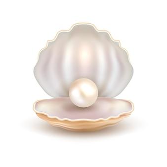 Perle offene schale isoliert auf weiß