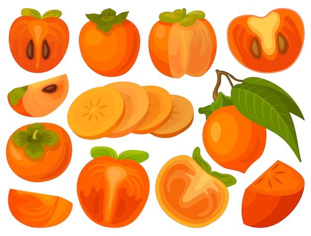Persimonenillustration auf weißem hintergrund. cartoon set icon frucht. cartoon set icon persimmon.