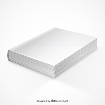 Perspective buch mockup
