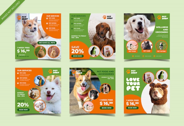 Pet shop instagram beitragsvorlage