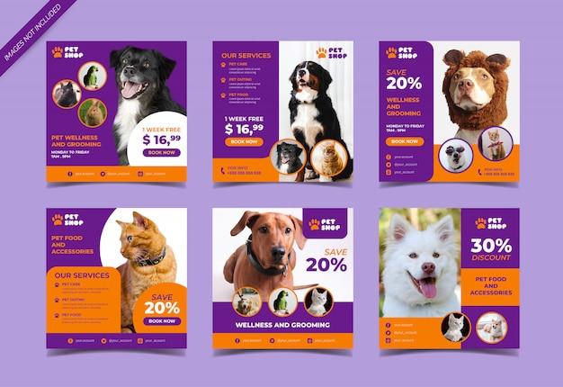 Pet shop social media beitragsvorlage