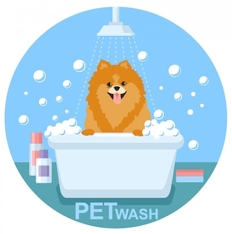 Pet wash. waschen sie ihren hund und pflegen sie ihr haustier