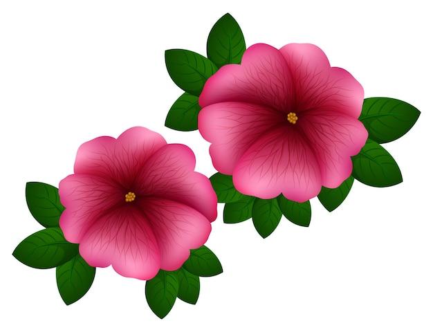 Petunienblüten in rosa farbe