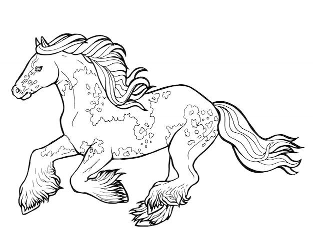 Pferd läuft trab. malbuch. das pferd läuft im trab. malbuch. tinker ist ein vollblutpferd.