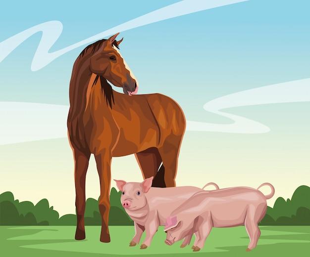 Pferd und schwein