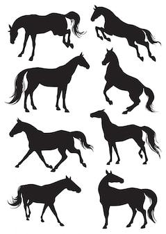 Pferdesilhouetten