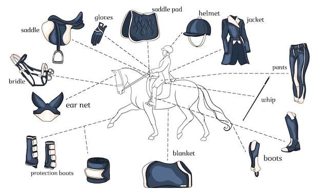 Pferdesport infografiken pferdegeschirr und reiterausrüstung in der mitte eines reiters auf einem pferd im cartoon-stil. satz von vektorillustrationen für training und dekoration.