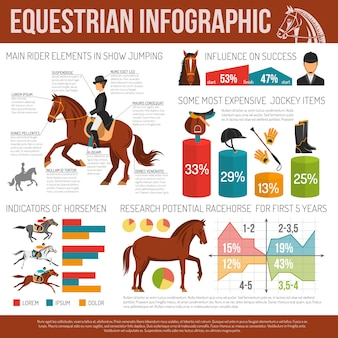 Pferdesport infographik