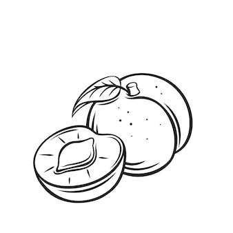 Pfirsichfrucht-umriss-symbol, monochrome darstellung zeichnen. gesunde ernährung, bio-lebensmittel, vegetarisches produkt.
