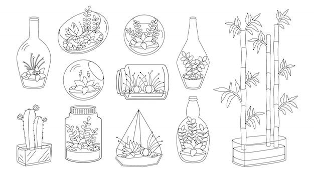 Pflanze und sukkulente in glasaquarium flache linie gesetzt. schwarze lineare karikaturhausblume. dekorative zimmerpflanzen, kaktusbambus. nettes interieur der trendigen wohnkulturkollektion. isolierte illustration