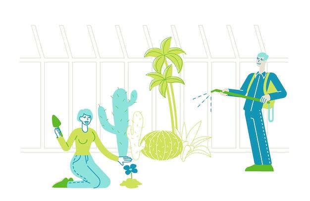 Pflanzen und pflege von pflanzen im gartengewächshaus