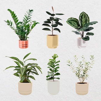 Pflanzenvektorkunstsatz, zimmerpflanze in einem blumentopf