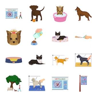 Pflege hund cartoon set symbol. gesetzte ikone der tierkarikatur. pflege hund.