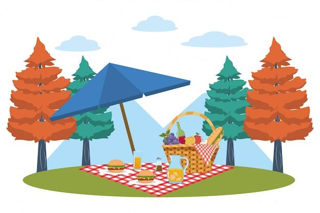 Picknickkorb im wald